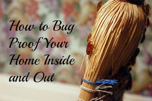 bug proof home